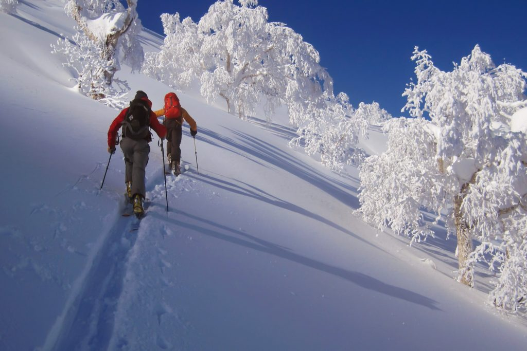 backcountry skiing japan 1