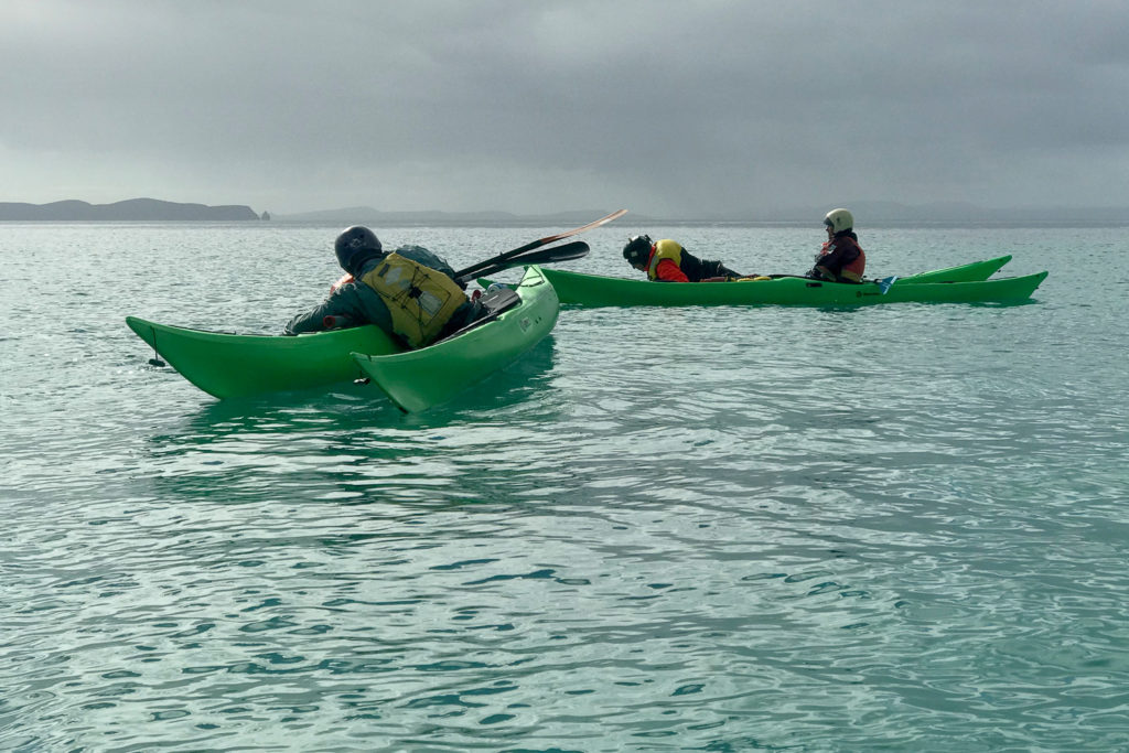 Sea Kayaking Bruny Island